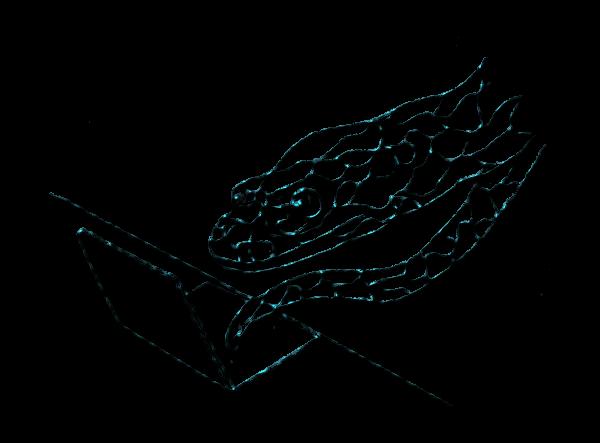 Python-main-with-lizard-pylab